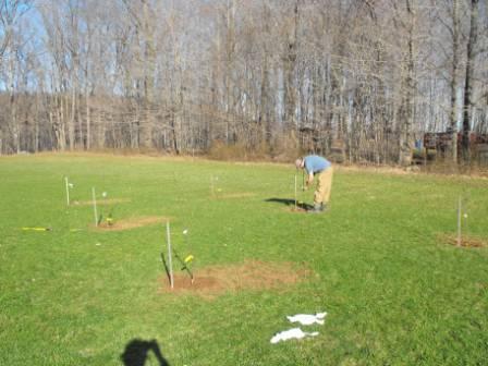 planting-apples-008