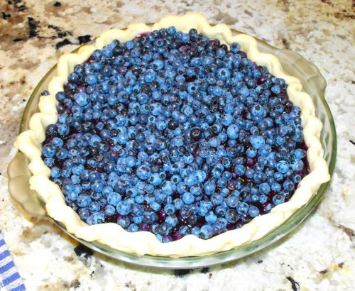 blueberry pie 004